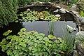 MSU Horticulture Gardens 36.jpg