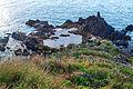Madeira 2 2014.jpg