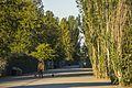 Magnuson Park (21670007622).jpg
