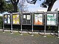Manifesti elettorali 2013 a Camponogara.JPG