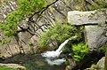 Marão Trail Adventure XVIII (41938436804).jpg