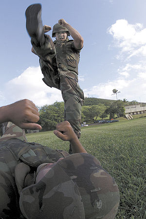 Stomp (strike) - Marines practicing axe stomp.