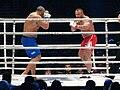 Mariusz Pudzianowski vs J. Thompson.JPG
