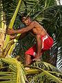 Marshall Islands PICT0466 (4744749653).jpg