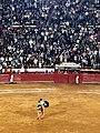 Matador Juli - Plaza Mexico.jpg