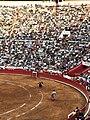 Matador and Bull - Plaza Mexico.jpg