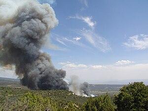 Cedaredge, Colorado - McGruder fire on 7-3-04 below Rollins Sandstone