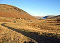 Meggethead and reservoir beyond - geograph.org.uk - 114748.jpg