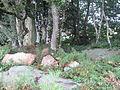 Menhir-Guernangoue1.jpg