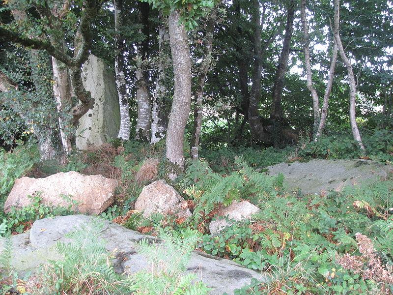 Ce menhir fait à l'origine partie d'un alignement de 3 rochers détruit en 1967. Aujourd'hui 2 rochers sont au sol, dont un avec des inscriptions.