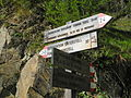 Meraner Höhenweg Naturns2.JPG