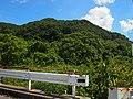 Miashi-Fuji Bridge.jpg