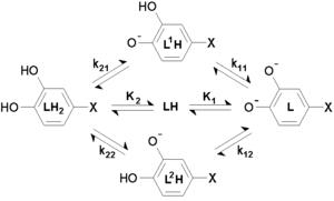 Equilibrium constant - Image: Micro constants