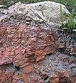 Microsyenite dike (Precambrian; Michipicoten River Bridge South roadcut, south of Wawa, Ontario, Canada) 30 (47924892208).jpg