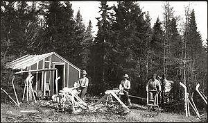 Mic-Mac hockey stick - Mi'kmaq making hockey sticks from hornbeam trees (''Carpinus caroliniana'') in Nova Scotia about 1890.