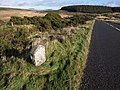 Milestone near Powder Mills - geograph.org.uk - 1590525.jpg