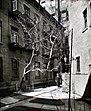 Milligan Place, Manhattan (NYPL b13668355-1219151).jpg