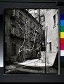 Milligan Place, Manhattan (NYPL b13668355-1219151).tiff