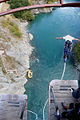 Mombas over Kawarau bridge --Queenstown--.jpg
