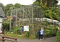 Monkey Sanctuary 1.jpg
