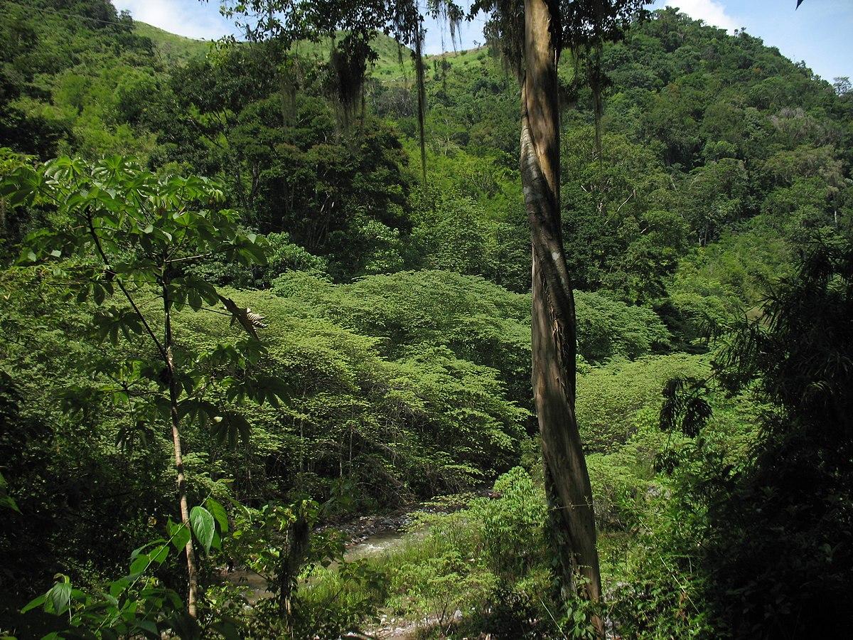1200px MontanasdelaSierradeAgalta Honduras Когда лучше ехать в Гондурас: погода, праздники и события