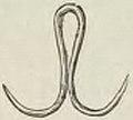 Montpetit - Poissons d'eau douce du Canada, 1897 (page 395 crop)b.jpg