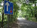 Multiple bridges over River Wensum near Lenwade - geograph.org.uk - 552086.jpg