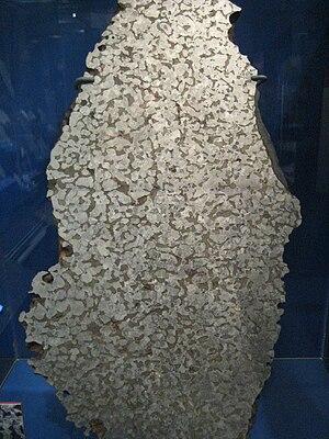 Mundrabilla (meteorite) - Mundrabilla slice at NMNH.