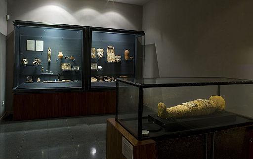 Museu Víctor Balaguer (sala egípcia)