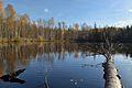 Must-Jaala järv1.jpg