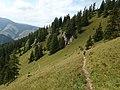 Nízke Tatry, cesta zo sedla Machnaté do Demänovskej doliny (3).jpg