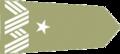 Naramiennik Generał brygady land.png
