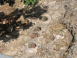 "Holes dug in bedrock by the Natufians at the ""El-Wad Terrace"" archaeological"