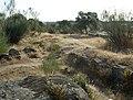 Navalagamella 3 - panoramio.jpg