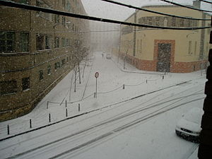 Nevada en Zaragoza