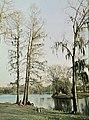 New Orleans - Tulane U Jambalaya 1970 - Audubon Park Lagoon.jpg