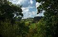 Newgrange from Bru na Boinne.jpg