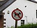 No cubist dogs (30023046605).jpg