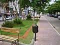 Nova praça da Avenida - panoramio.jpg
