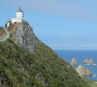 Lighthouse in New Zealand