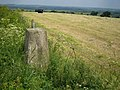 OS Triangulation Pillar at Waddesdon Hill - geograph.org.uk - 183819.jpg
