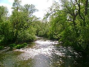 Oatka Creek - Oatka Creek in Wheatland