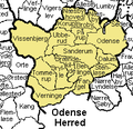 Odense Herred.png