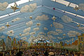 Oktoberfest 2011 - Flickr - digital cat  (7).jpg