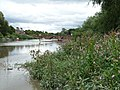 Old Dee Bridge, Chester - view of west side from south bank of River Dee 02.jpg