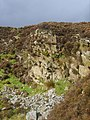 Old Quarry - geograph.org.uk - 1520605.jpg