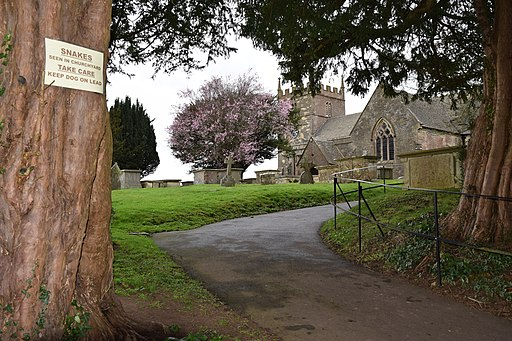 Old Sodbury Church (Saint John the Baptist) (32378138727)
