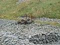 Old railway truck - geograph.org.uk - 41024.jpg