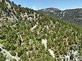 Olimpos Teleferik - panoramio.jpg