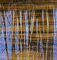 On water (2428673153).jpg